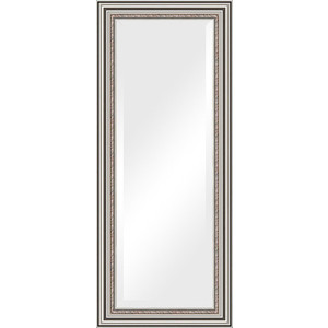 Зеркало с фацетом в багетной раме поворотное Evoform Exclusive 61x146 см, римское серебро 88 мм (BY 1267) зеркало с фацетом в багетной раме поворотное evoform exclusive 71x161 см палисандр 62 мм by 1204