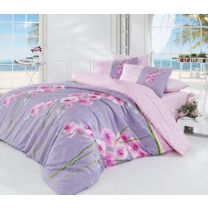 Комплект постельного белья Cotton Life 1,5 сп Orkide лиловый (8018)