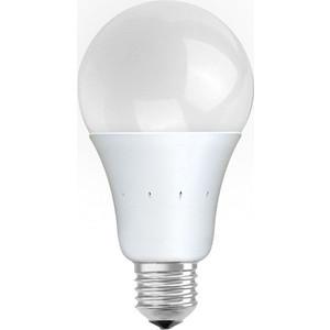 Светодиодная лампа Estares ES-GL-20-WW-220-E27 теплый свет