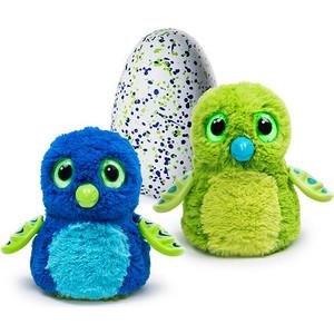 Интерактивный питомец Hatchimals Дракоша зеленый, вылупляющийся из яйца (1 игрушка)