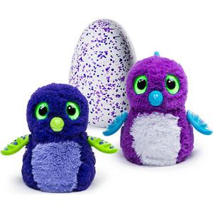 Интерактивный питомец Hatchimals Дракоша фиолетовый, вылупляющийся из яйца (1 игрушка)