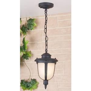 Уличный подвесной светильник Elektrostandard 4690389042843