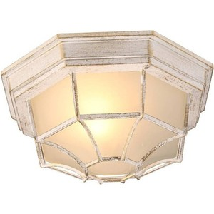 Уличный потолочный светильник Artelamp A3121PF-1WG светильник уличный потолочный artelamp a8154pf 2gy 2хe27х60