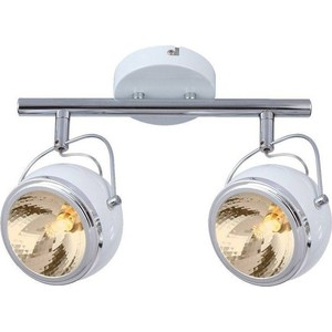 Спот Artelamp A4509PL-2WH