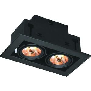 Встраиваемый светильник Artelamp A5930PL-2BK бра artelamp interior a7107ap 1ab