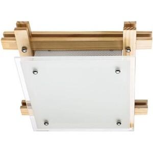 Потолочный светильник Artelamp A6460PL-2BR arte lamp a6460pl 2br
