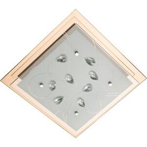 Потолочный светильник Artelamp A4042PL-2CC цена 2017