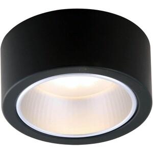 Потолочный светильник Artelamp A5553PL-1BK artelamp a2487pn 1bk
