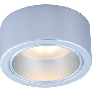 Потолочный светильник Artelamp A5553PL-1GY