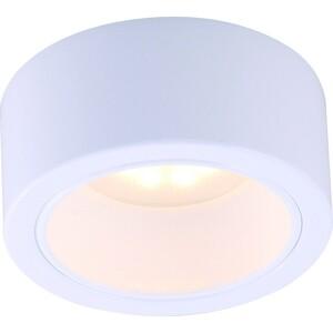 Потолочный светильник Artelamp A5553PL-1WH