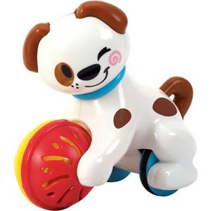 Развивающая игрушка Playgo Щенок (Play 1662) сортеры playgo развивающая игрушка самолет сортер