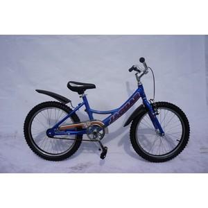 Детский двухколесный велосипед Jaguar MS-A202 Alu синий rt велосипед двухколесный ba hot rod 12