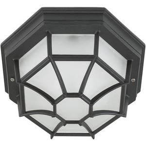 Уличный потолочный светильник Eglo 5389