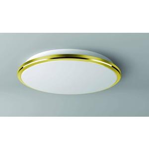 Потолочный светодиодный светильник Citilux CL702302W