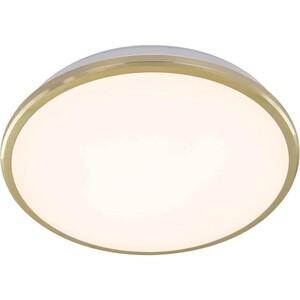 Потолочный светодиодный светильник Citilux CL702222W
