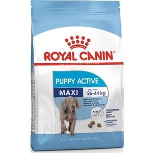Сухой корм Royal Canin Maxi Junior Active для щенко крупных пород с ысокими энергетическими потребноями 15кг (193150)