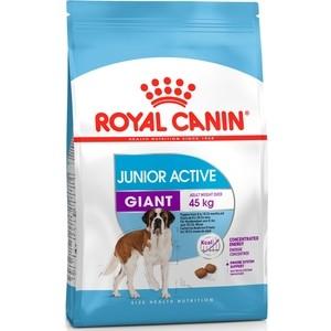 Сухой корм Royal Canin Giant Junior Active для щенков очень крупных пород с высокими энергетическими потребностями 15кг (198150) велосипед giant halfway 1 2013