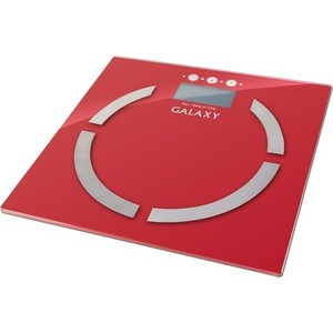 Весы GALAXY GL4851