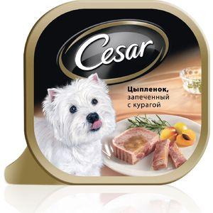 Консервы Cesar цыпленок, запеченный с курагой для собак мелких пород 100г (10083318) корм для собак cesar цезарь консервы с ягненоком и овощами 100г пакет