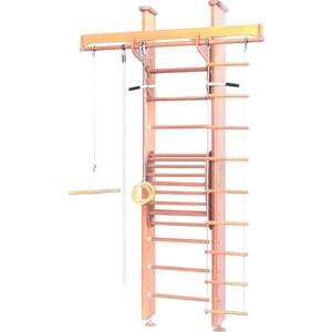 Детский спортивный комплекс Карусель 2Д.02.02 к стене (с тренажером для осанки №2) Светлый рама с креплением к стене iron king cr 21