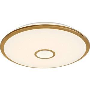 Потолочный светодиодный светильник Citilux CL703102R