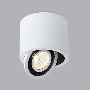 Потолочный светильник Donolux DL18700/11WW-White Dim