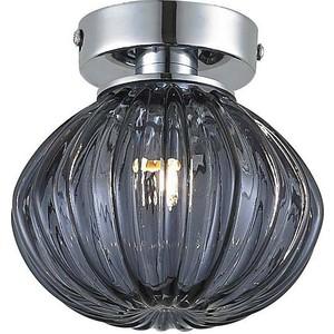Потолочный светильник Donolux C110243/1grey