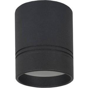 Потолочный светильник Donolux DL18481/WW-Black R