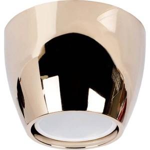 Точечный светильник Donolux N1597-Gold