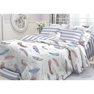 цена на Комплект постельного белья Verossa Constante 1,5 сп, перкаль, Plumelent с наволочками 50x70 (706994)