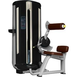 Разгибание спины Bronze Gym MNM-009 цена