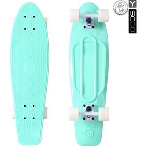 RT 402-A Скейтборд Big Fishskateboard 27'' винил 68,6х19 с сумкой AQUA/white