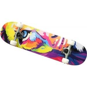 Скейт Moove&Fun Скейтборд клен, цвет C, MP3108-11C