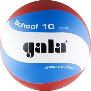 Мяч волейбольный Gala School 10 (BV5711S р. 5) мяч футзальный select futsal talento 11 852616 049 р 3