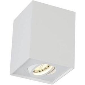 Потолочный светильник Crystal Lux CLT 420C WH