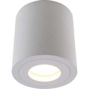 Потолочный светильник Divinare 1460/03 PL-1