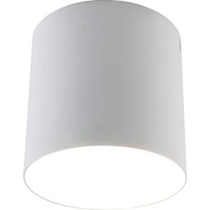 Потолочный светильник Divinare 1465/03 PL-1
