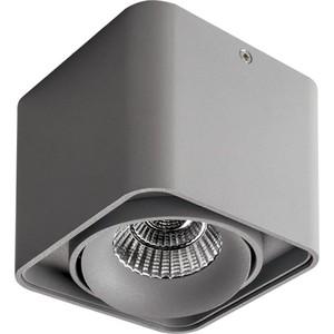 Потолочный светильник Lightstar 212519