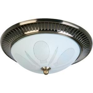 Потолочный светильник Toplight TL5060Y-02AB lussole loft накладной светильник toplight fae tl5060y 02ab