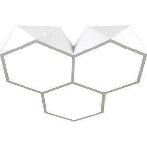 Потолочный светодиодный светильник Omnilux OML-45307-60