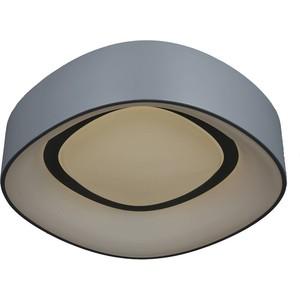 Потолочный светодиодный светильник Omnilux OML-45217-51 vivanco 45217