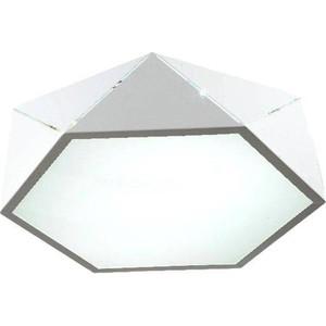 Потолочный светодиодный светильник Omnilux OML-45307-26 потолочный светодиодный светильник omnilux oml 45307 26