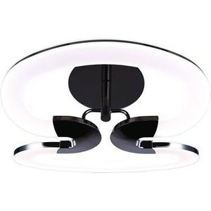 Потолочный светодиодный светильник IDLamp 410/2PF-LEDWetasphalt светильник потолочный idlamp 217 2pf blackchrome