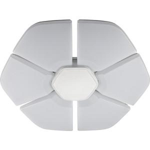 Потолочный светодиодный светильник IDLamp 305/80PF-LEDWhite икона янтарная богородица скоропослушница кян 2 305