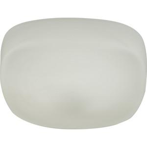 Потолочный светодиодный светильник IDLamp 266/20PF-LEDWhite анекс тур на щукинской