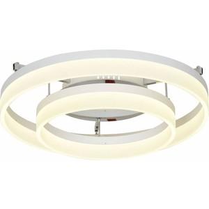 Потолочный светодиодный светильник ST-Luce SL928.502.02 потолочный светодиодный светильник st luce sl924 102 10