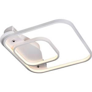 Потолочный светодиодный светильник ST-Luce SL857.502.02