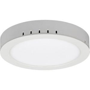 Потолочный светильник Elektrostandart 4690389084577