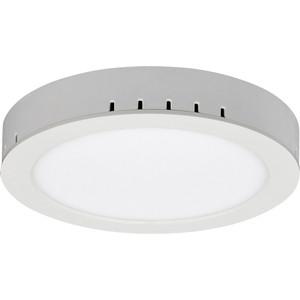 Потолочный светильник Elektrostandard 4690389084560