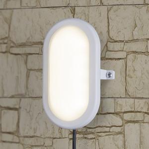 Светодиодный светильник ЖКХ Elektrostandard 4690389099113